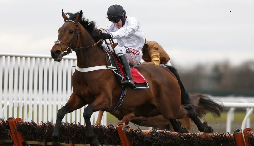 Brain Power odds appeal the most each-way among 2017 Champion Hurdle tips.